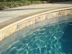 Waterline tile Swimming Pool Tiles, Swimming Pool Designs, Garden Pool, Pool Backyard, Patio, Waterline Pool Tile, Pool Landscaping, Pool Pavers, Landscaping Design