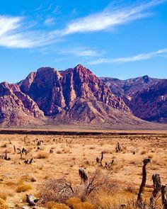 ♦ Nevada desert