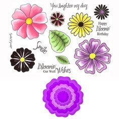 Stamp Set 429 - Blossoms Spellbinders  Combo Set