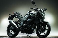 Z250 | Kawasaki India