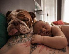 Amo la mia syberian HUSKY-Kids Per Bambini Felpa con cappuccio-CANE-CUCCIOLO-PET Canine