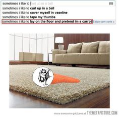 funny-Google-sugestion-lay-on-the-floor-carrot