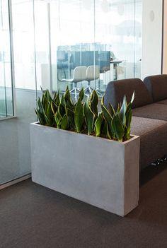 Grønne planter er bra for oss Planter Pots, Decor Ideas, Bedroom, Inspiration, Home, Indoor Plants, Biblical Inspiration, Ad Home, Bedrooms