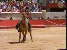 Yes it's bull fighting....but concentrate on the horse! So amazing