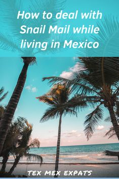 How to receive and manage old-school post-office mail while living abroad. Living In Mexico, Snail Mail, Tex Mex, Post Office, Live, School, Beach, Water, Travel