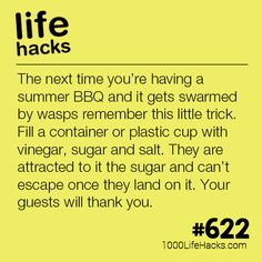 summer hacks How To Get Wasps To Stop Bugging You This Summer - 1000 Life Hacks Summer Life Hacks, Simple Life Hacks, Useful Life Hacks, 1000 Life Hacks, Thing 1, Insect Repellent, Home Hacks, Things To Know, Lifehacks