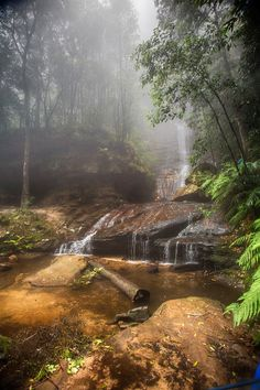 Empress Falls Early morning Mists, Valley of the Waters If you sit by a waterfall (or any fast moving water) for a while, some scientists tell us that ... - Peter Quinton - Google+