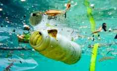 Africa: UN Declares War On Ocean Plastic – Voice and Viewpoint