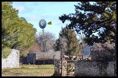 My Land, Snow, Windmills, Outdoor, Outdoors, Wind Mills, Windmill, Outdoor Living, Garden