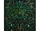 Art Print - Green Man- King of Holly - A3 (11.7x16.5) print by John Emanuel Shannon