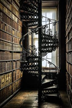 Ideas For House Entrance Modern Stairways Beautiful Library, Dream Library, Steel Stairs, Home Libraries, Stairway To Heaven, Library Design, House Entrance, Staircase Design, Architecture