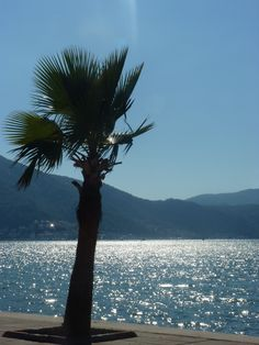 Looking out over Fethiye Harbour in Turkey