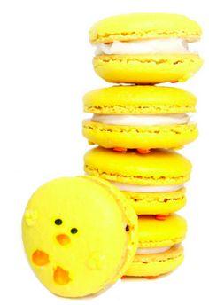 easter, spring, bird, chick, french macaroon, macaroon,