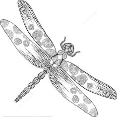 Zentangle Dragonfly coloring page from Zentangle category. Select from 21123 printable crafts of cartoons, nature, animals, Bible and many more.