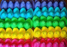 ❖de l'arc-en-ciel❖❶ Rainbow color peeps candy Happy Colors, True Colors, All The Colors, Vibrant Colors, Taste The Rainbow, Over The Rainbow, Rainbow Things, Peeps Candy, Rainbow Treats