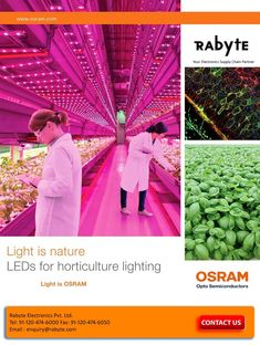 Horticulture Lighting - Perfect LED lighting for all Types of Plants and Flowers ! Led Lighting Solutions, Lighting System, Types Of Flowers, Types Of Plants, Indoor Farming, Vertical Farming, Supply Chain, Horticulture, Blue Green