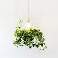 Hanging plant cage pendant light by TudoandCo on Etsy, $180.00