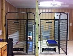 inside multiple dog cages
