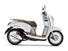 Honda Scoopy i