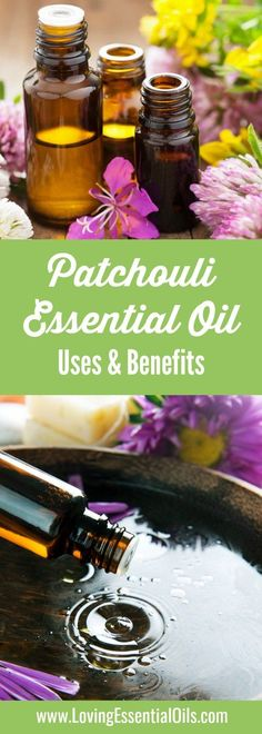 Benefits of Patchouli Oil | Patchouli Oil Uses | Loving Essential Oils #patchouli #essentialoiluses #aromatherapy