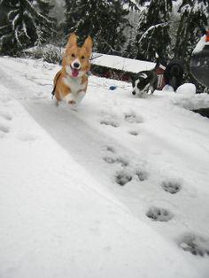 dashing through the snow....