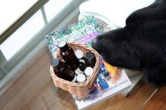 The concept of animal aromatherapy is something that is relatively new. But it is slowly gaining attention from pet owners who want only the safest approach in treatment for their pets. In fact, essen