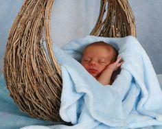 Newborn Beauty