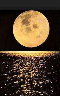 One Moon shows in every pool, In every pool the one Moon. ~~ Zen Proverb