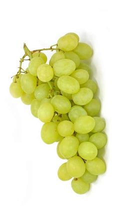 Fruit And Veg, Fruits And Vegetables, Fresh Fruit, How To Store Grapes, Grape Nutrition, Fruit Names, Fruit Picture, Fruit Photography, Beautiful Fruits