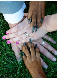 Ring shot with your dogs! | Photos by Miss Ann  When we have a dog, it will be a part of our family and we'll do this!