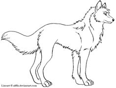 Free wolf lineart by Alffis on DeviantArt