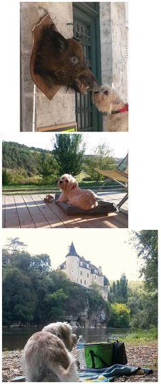 Vacances en Dordogne.