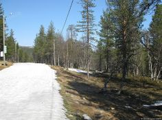 Saariselkä in May - Ski track | Saariselka. Cabins and Activities in Saariselkä #saariselkä #saariselka #saariselankeskusvaraamo #lapland #astueramaahan #stepintothewilderness #saariselkaMTB http://www.saariselka.com