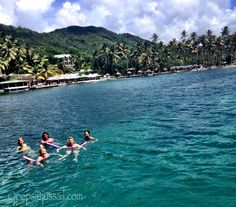 Marigot Bay ... Fancy having a swim before lunch!  www.jussail.com #daycharters #saintlucia #stlucia #caribbean #westindies