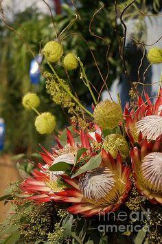 exotic-floral-arrangement-zori-minkova.