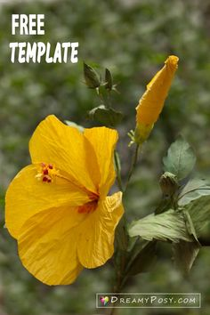 Hibiscus paper flower, paper flower template and tutorial, free template and tutorial