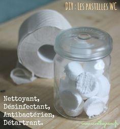DIY : Pastilles écologiques effervescentes pour WC. Voici ma recette de pastilles 4 en 1 : effervescentes, nettoyantes, anti-bactériennes et désodorisantes.