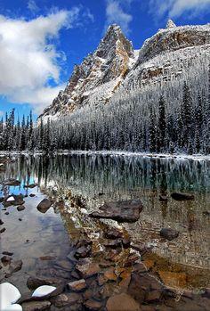 Wiwaxy Winter, Yoho National Park, Canada Copyright: Alvin Brown (Cormac)