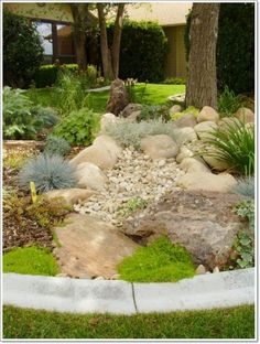 for the back yard Landscaping Ideas > Landscape Design > Pictures: Xeriscapes & waterwise landscapes Decorative Rock Landscaping, Low Water Landscaping, Landscaping With Boulders, Front Yard Landscaping, Backyard Landscaping, Landscaping Ideas, Landscaping Software, Low Maintenance Landscaping, Landscaping Contractors