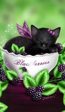 Black Angel Kitty in a bowl of Black Berries by M. D artist name in bottom corner♥♥ Gallery.ru / Все альбомы пользователя celita