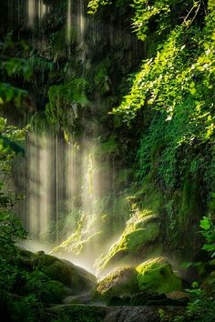 Light and water, perfect blend for cleansing the body, heart and soul....  Rev. Sandra Rodgers