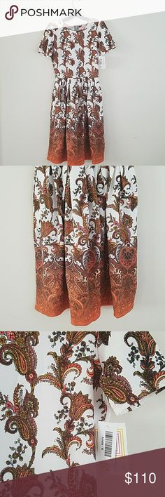 Stunning hard to find Lularoe Amelia Absolutely beautiful, hard to get!  Amelia, this style does not work for me and of course found many before I tried them on. Just looking to get what I paid back so my bf doesn't kill me lol :) LuLaRoe Dresses