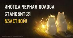 http://www.adme.ru/cards/inogda-chernaya-polosa-stanovitsya-vzletnoj-1180010/