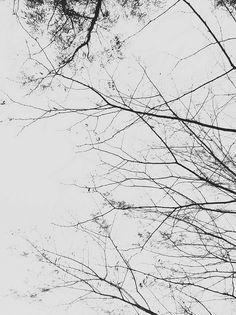 Winter Melancholy Creeps In This Petty >> 1022 Best Melancholy Interludes Images In 2019 Photography