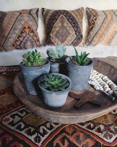 succulents, kilim pillows - apartmentf15