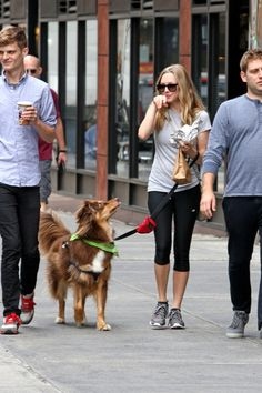 Amanda Seyfried - Amanda Seyfried Walks Her Dog in NYC