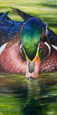 ideas color pencil Refined Presence Colorful duck painting inspired by the Wood Duck! Vibrant art that will look awesome in any Lake house! Wildlife Paintings, Wildlife Art, Watercolor Bird, Watercolor Paintings, Bird Paintings, Animal Drawings, Art Drawings, Horse Drawings, Drawing Animals