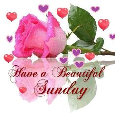 Good Morning sisters,and all,have a lovely Sunday,God bless,xxx take care and keep safe,❤❤❤☀