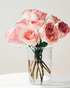 beautiful pink roses in a vase