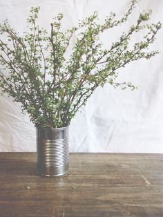 Tin can vases Tin Can Flowers, Pretty Flowers, Vases, Vintage Walls, Flower Beds, Flower Power, Flower Arrangements, Wedding Flowers, Centerpieces